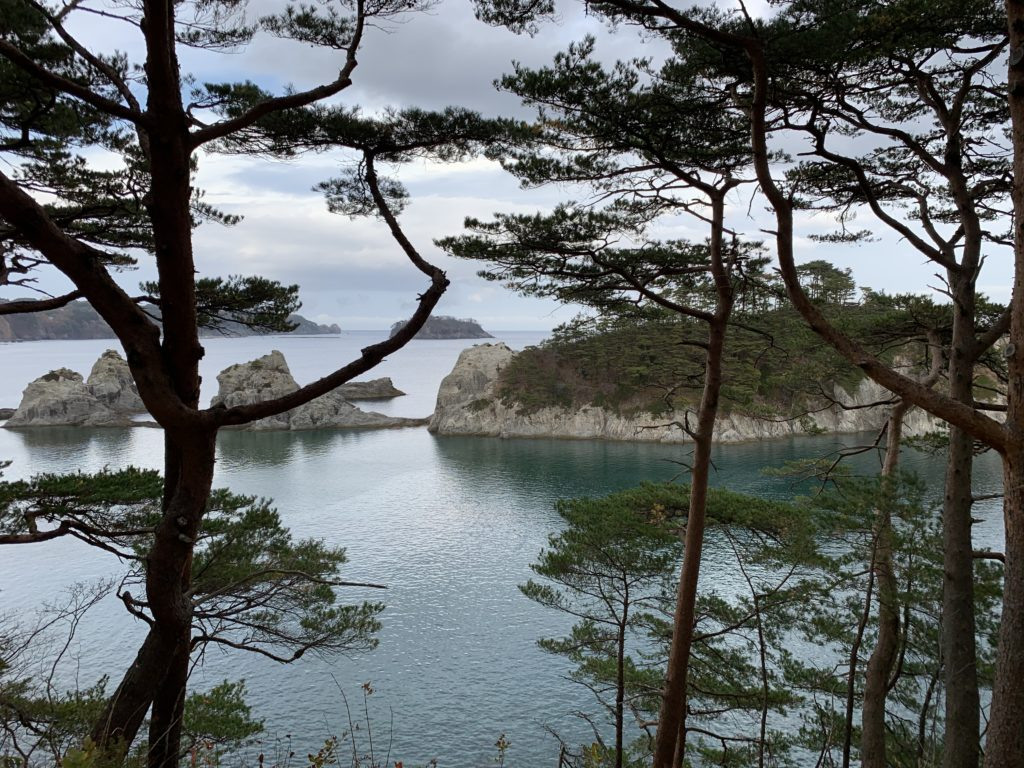 A calm scene of trees, rock and sea.