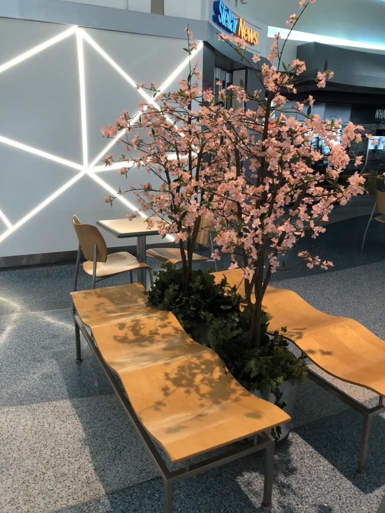 A stylish wooden bench at BWI, with cherry-blossom accent