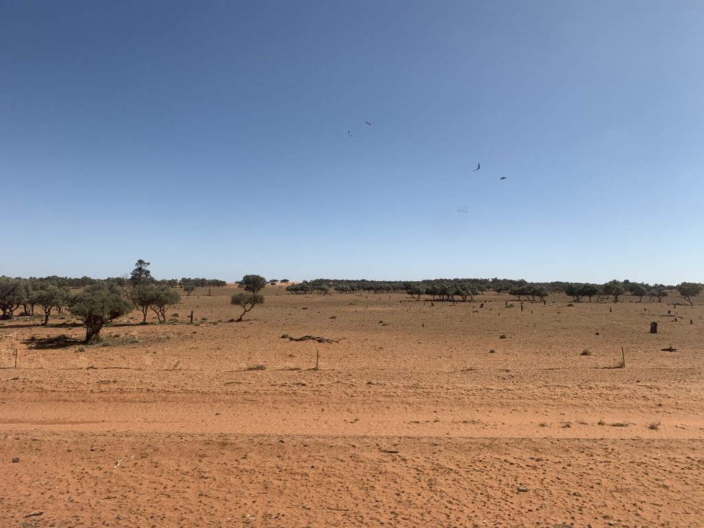 A scenic view of blue sky and red earth, snapped from the train
