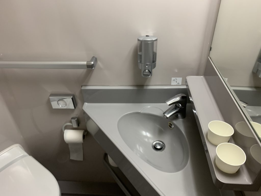 A photo of the grey sink and white toilet in the private bathroom found in every cabin