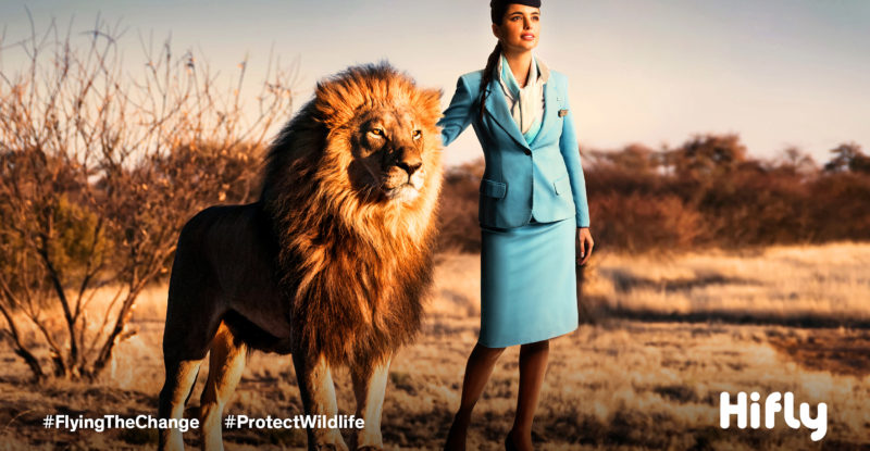 Flight Attendant in a blue uniform standing next to a lion on the barron fields.