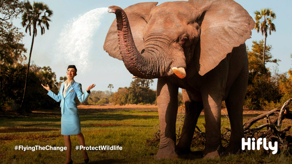 Flight attendant dressed in a blue uniform being sprayed with water by an elephant