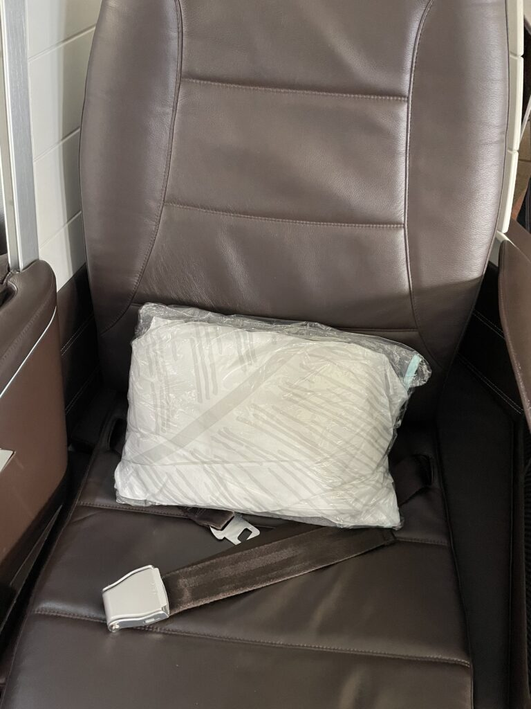 Hawaiian Airlines first class seat, deep brown leather of the white curved seat shell
