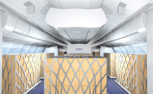 Airbus and LHT cargo in the cabin solution rendering image. Showing seats removed and cargo shipments in place of them.
