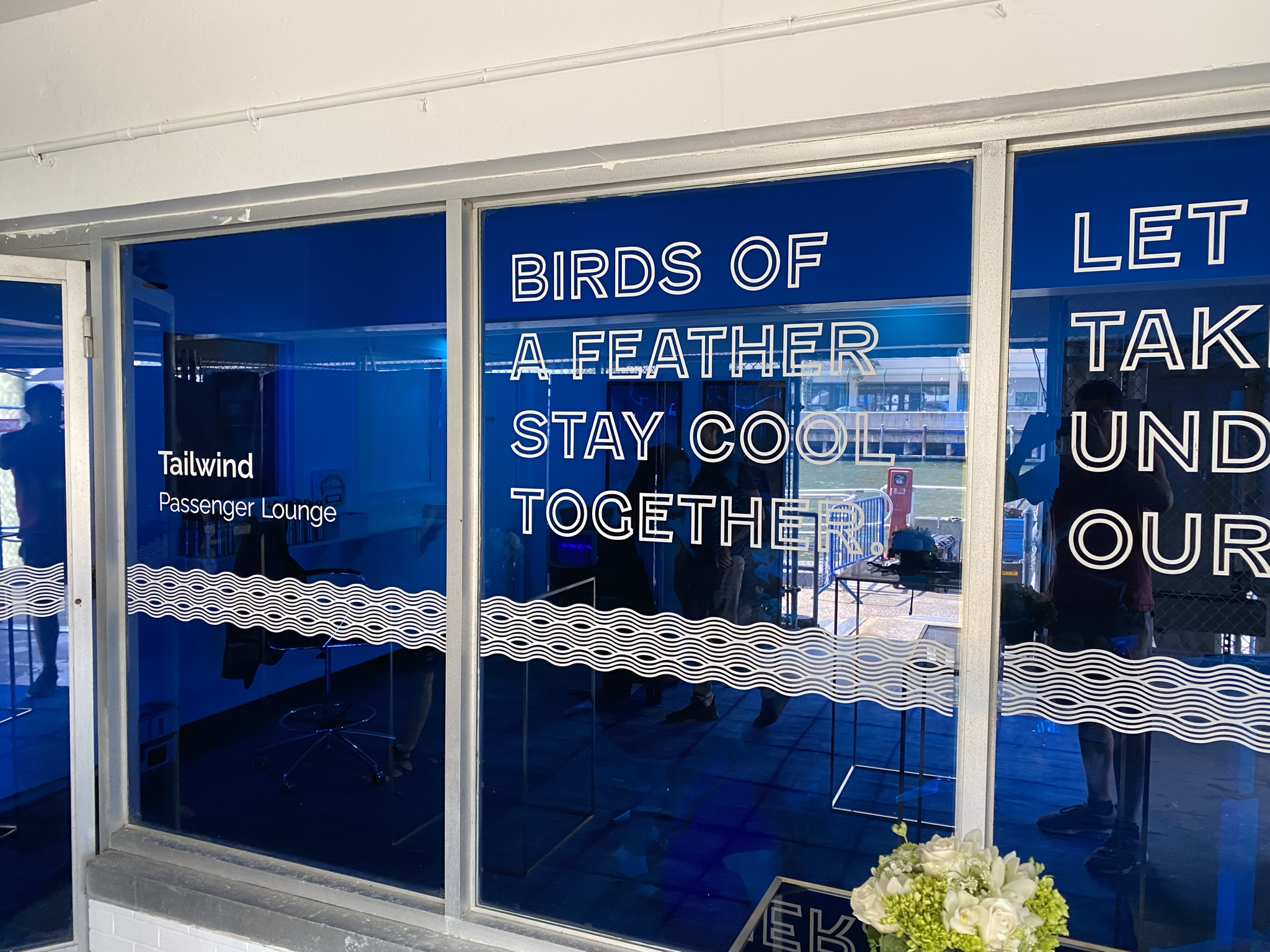 """The Tailwind lounge windows have signage saying: """"Birds of a feather stay cool together"""""""