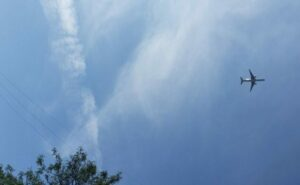 Aircraft flying overhead with trees in the scene